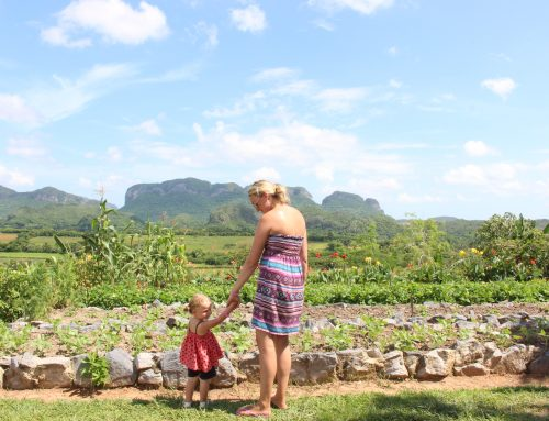 Vinales, our favourite place in Cuba