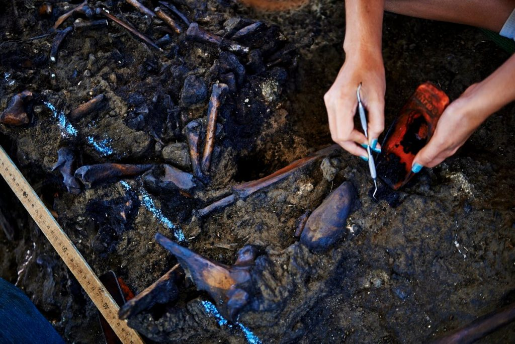 La Brea Tar Pits - Things to do with kids in Los Angeles