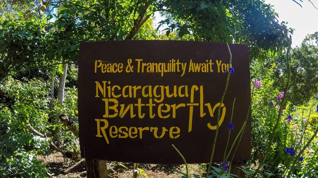 Granada Butterfly Reserve - Things to do in Granada, Nicaragua