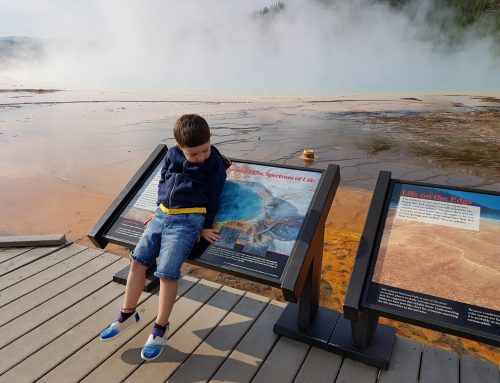 YELLOWSTONE WITH KIDS