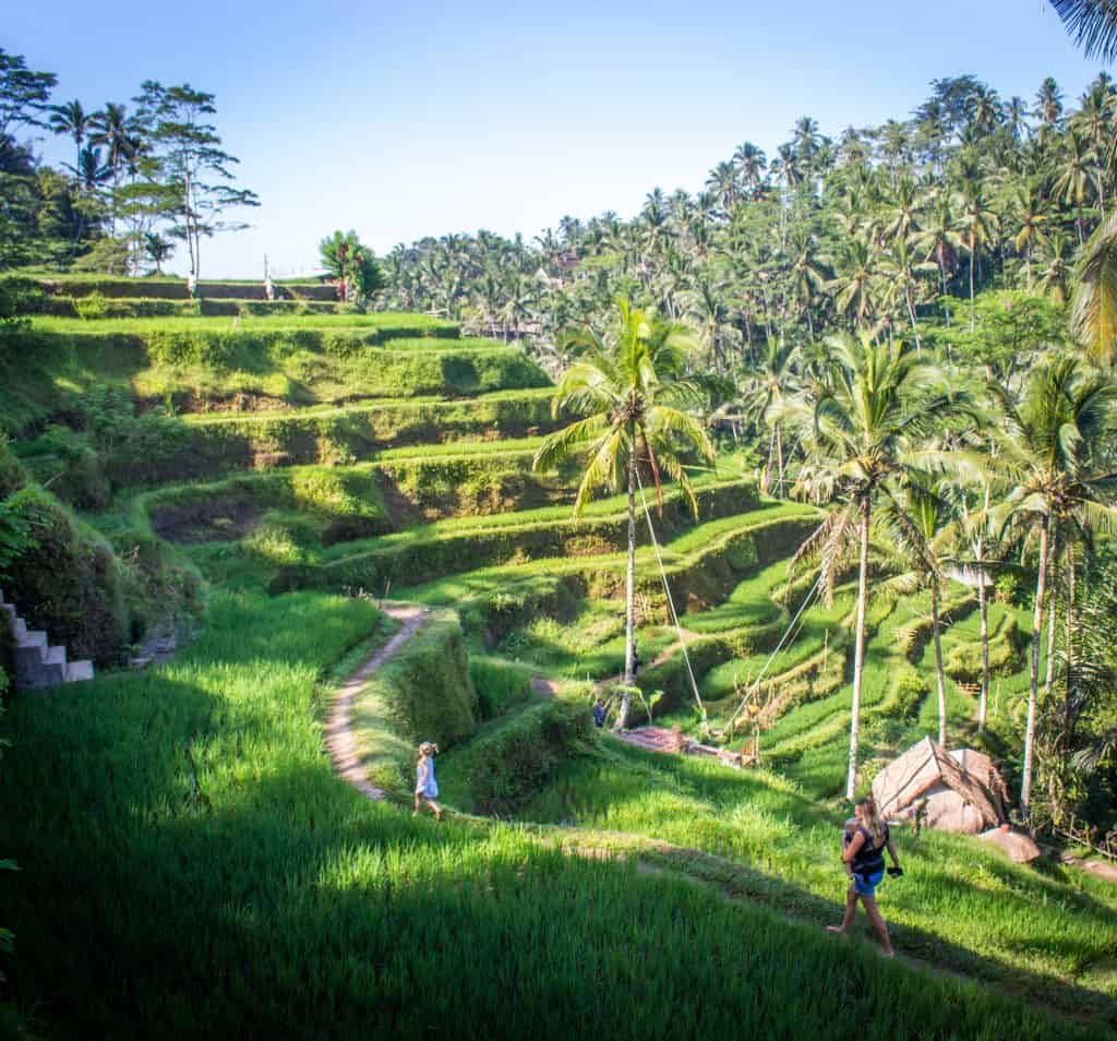 Ubud with children