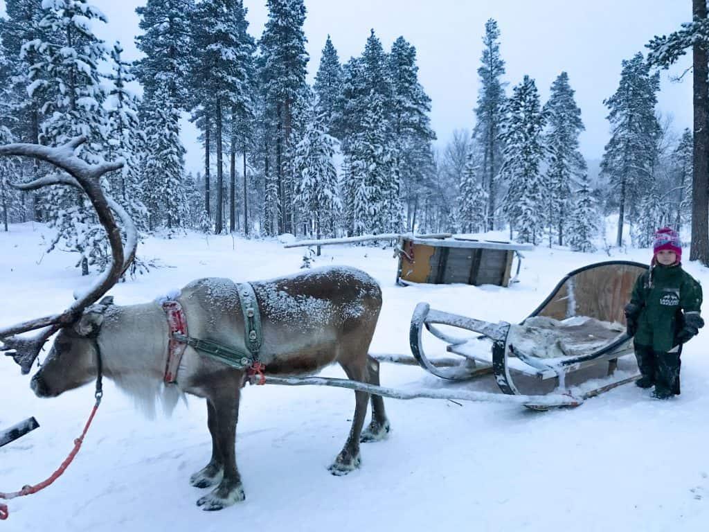Santas Lapland review