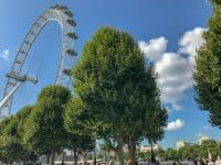 The London Eye - Things to do in London