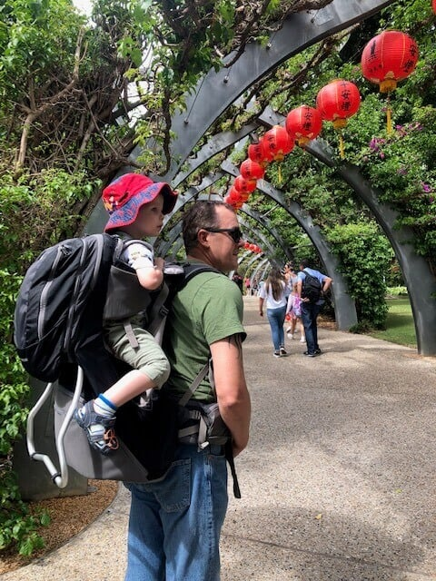 Best baby and toddler carriers for travel - MacPac