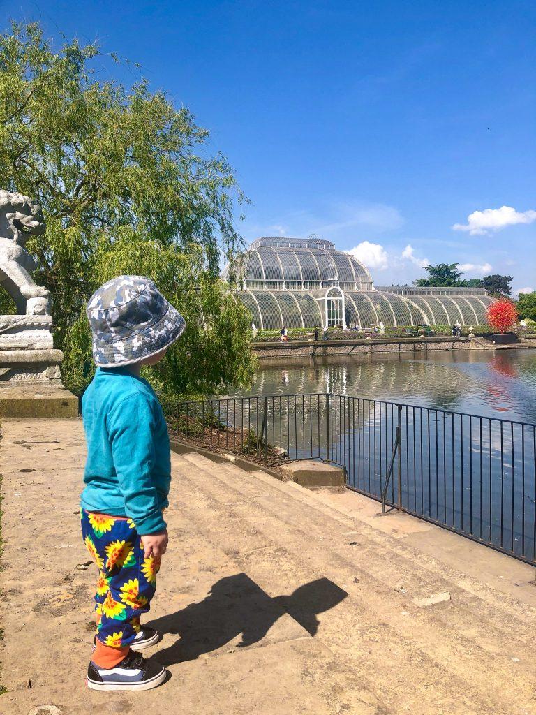 kew gardens attractions
