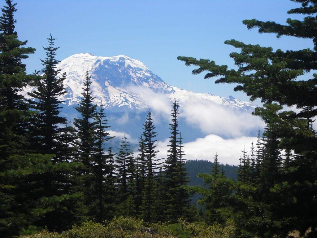Outdoor activities seattle - Mount Rainier