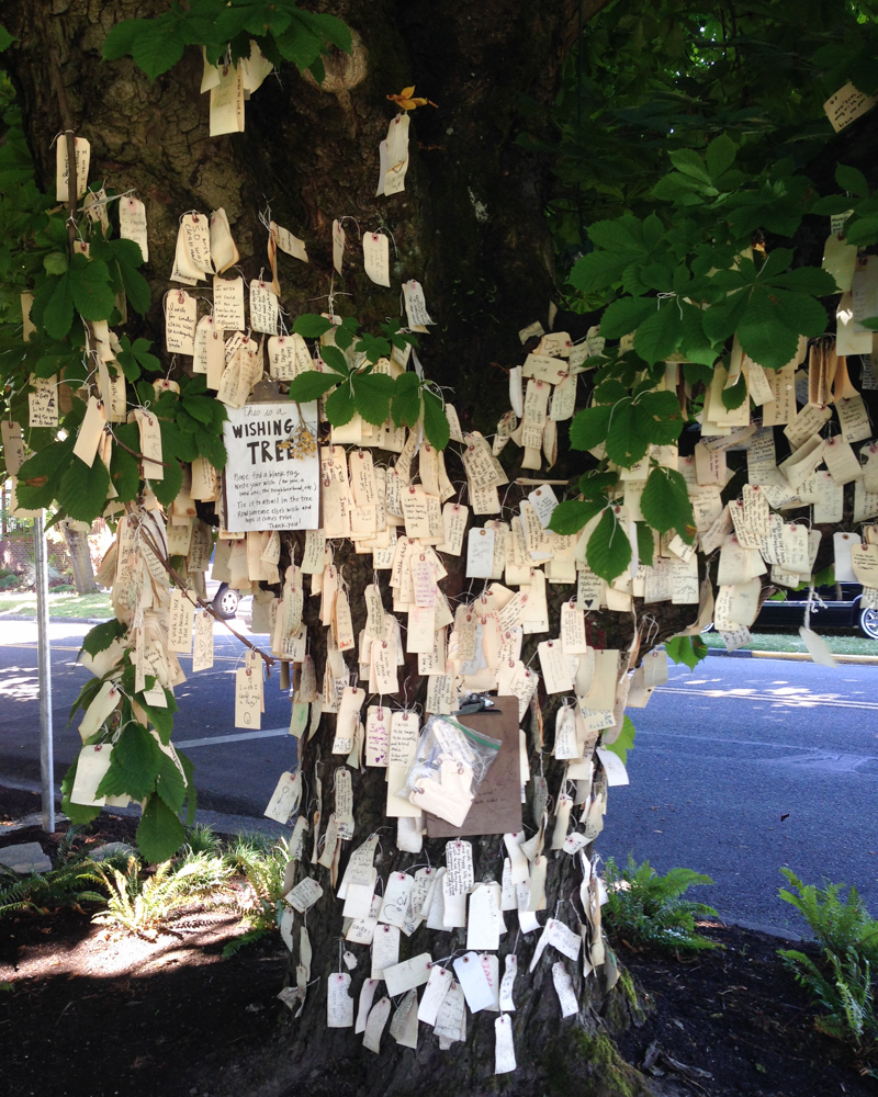 things to see in portland - the wishing tree