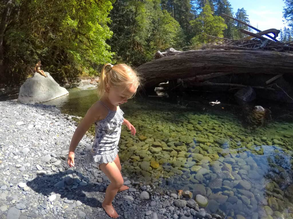 olympic national park with toddlers