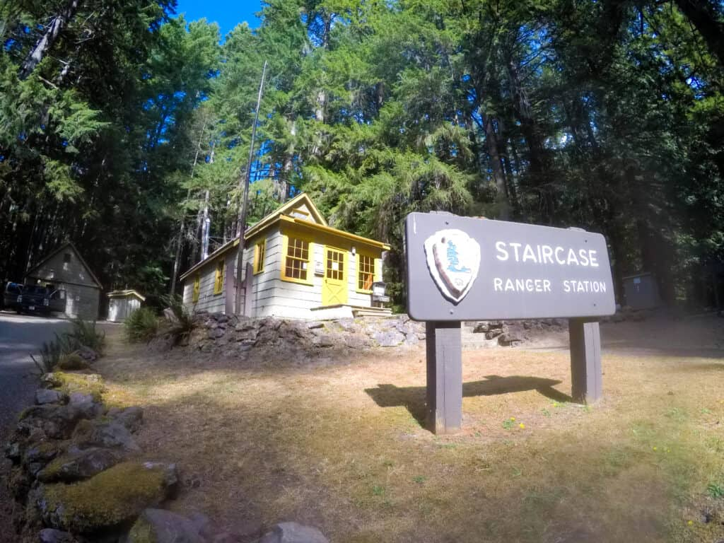 olympic national park for kids