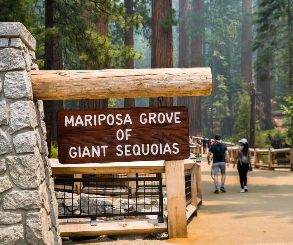 Yosemite Tours San Francisco
