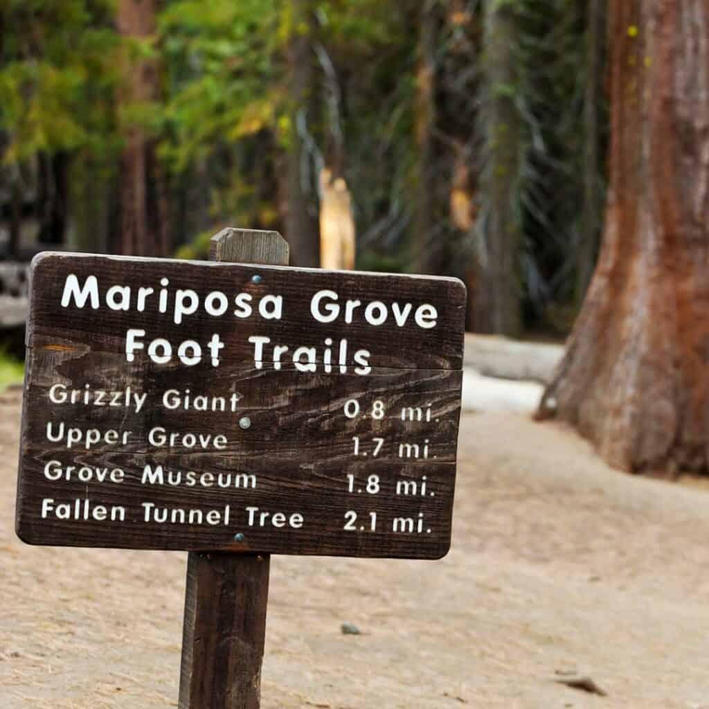 Yosemite park fall